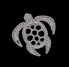 Sea Turtles Crete