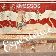 Skip the Line entry to Knossos Palace and 90 minute guided interpretation of this important historic site