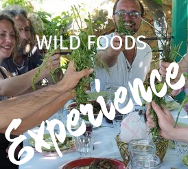 Wild Food Foraging Experience