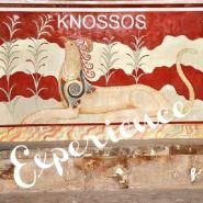 Knossos Experience