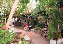 Nikos Hotel - leafy entrance