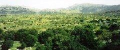 Lasithi Plateau, Crete, Kriti : Photog: Fenners1984