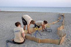 Archelon Volunteers - Turtle Project