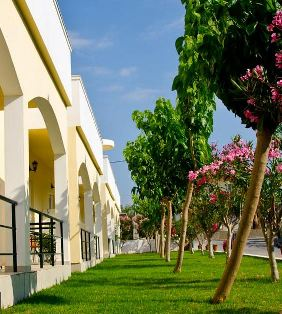 Mediterranean Studios Apartments - exterior with gardens