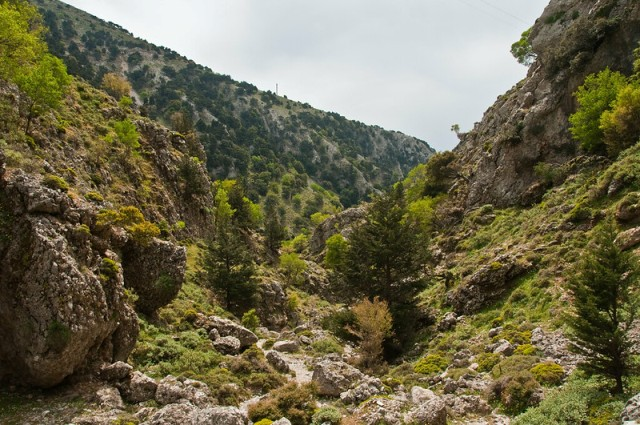 Imbros Gorge, near the entrance the gorge starts out quite wide (image by Graeme Churchard)