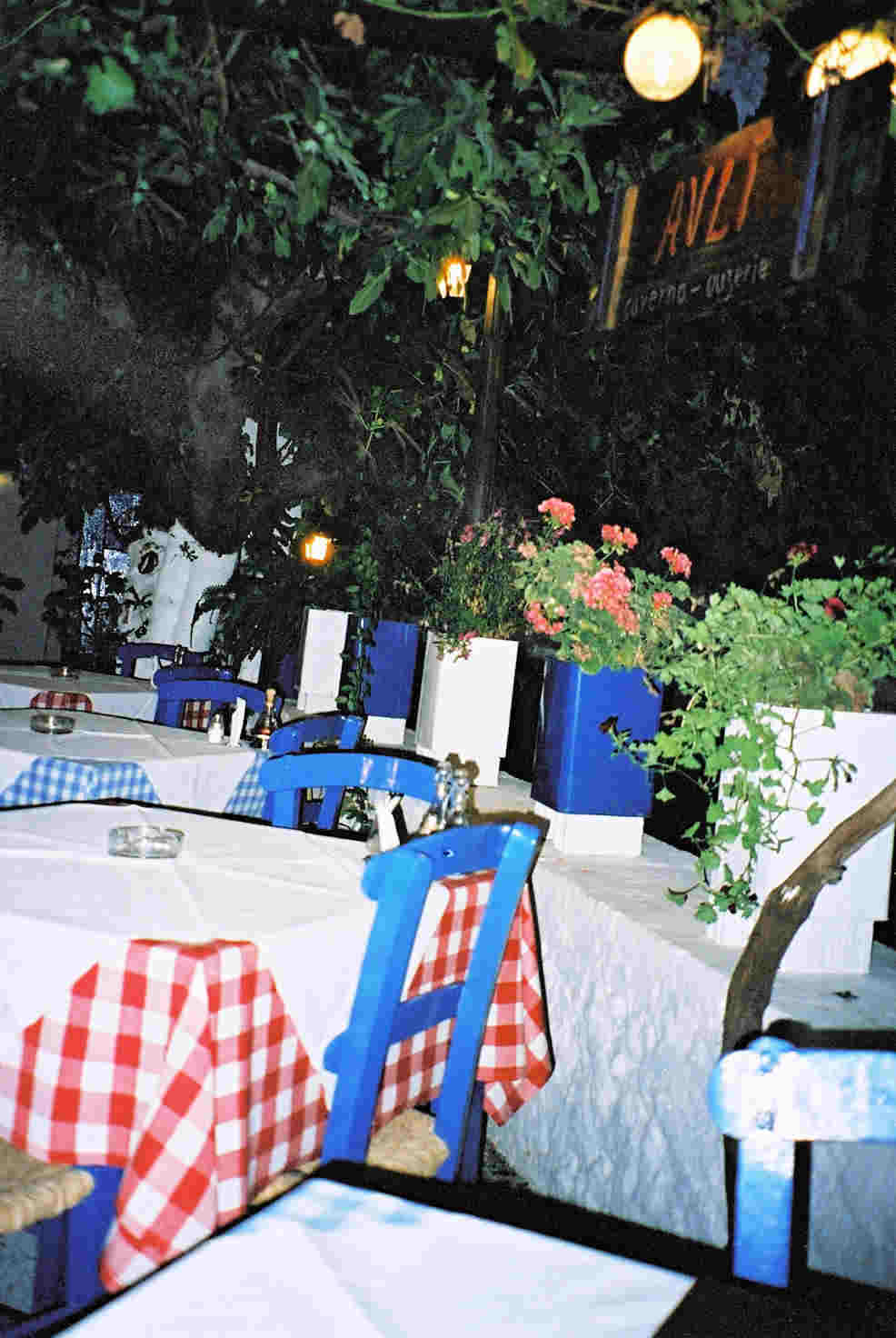 Traditional Greek Taverna