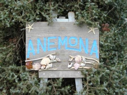 Anemona Pension - Azolimnos