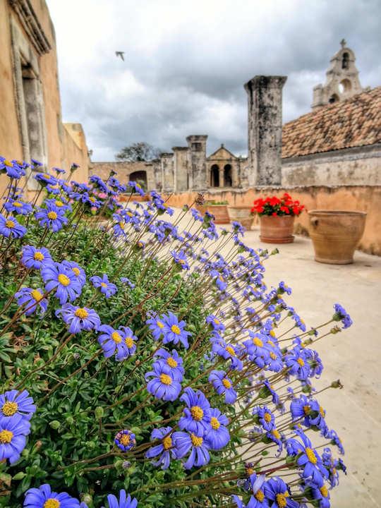 Arkadi Monastery Garden - Crete (image by Roberto Strauss)