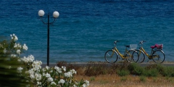 Bikes by the sea (image by Maxilgatto)