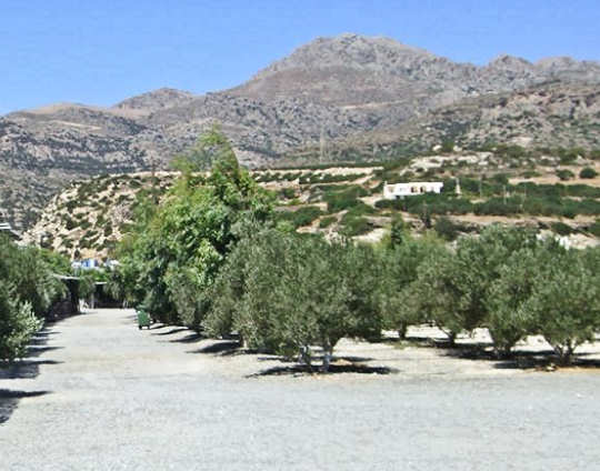 Camping Koutsounari - a clean and well organised camp ground