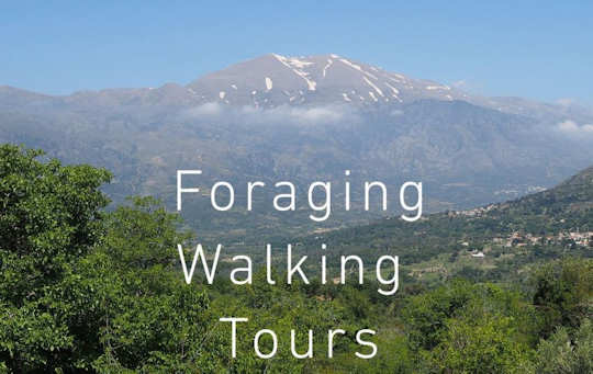 Visit Vasillis at the village taverna of Castello - take a foraging tour and eat traditional Cretan food here