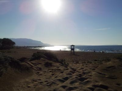 The Beach of My Dreams
