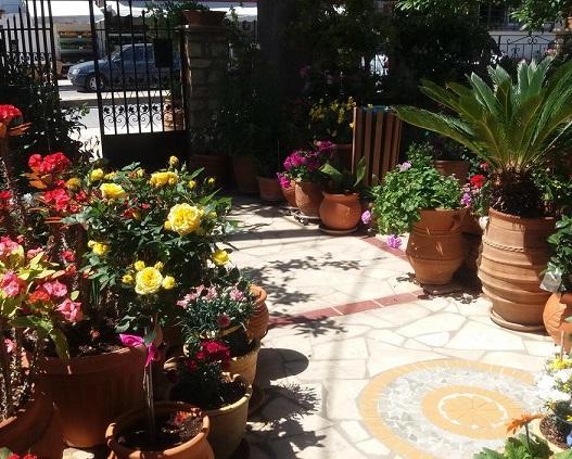A short walk from the sandy Ammoudi Beach, the family-run Eleni Studios is located in the seaside Agios Nikolaos Town.