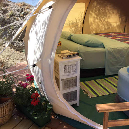 Glamping with Donkeys doesn't have to be uncomfortable