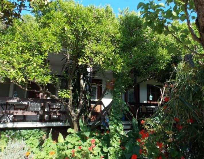 Agnontas Port in Skopelos - garden pension