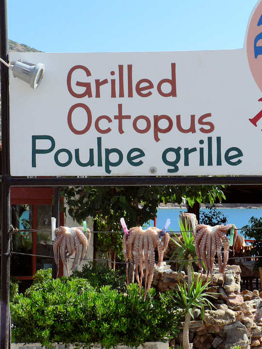 Grilled Seafood Sign and fresh octopus drying in the sun (image by James Preston)