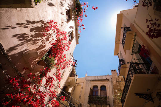 Crete Flowers - Chania Old town (image by Okko Pyykkö)