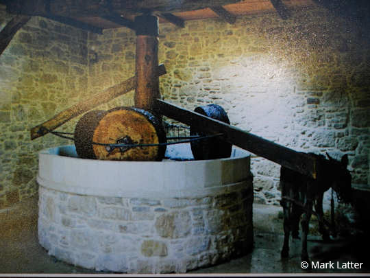 An image inside the exhibition shows how the donkey was tethered to the olive press to rotate the three crushing stones as she walked around and around in a circle (image by Mark Latter)