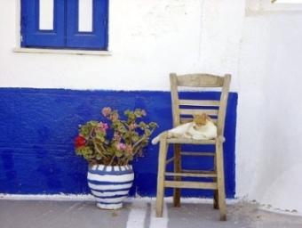 Village scene - cat on raffia chair (image by Greenmanalishi)