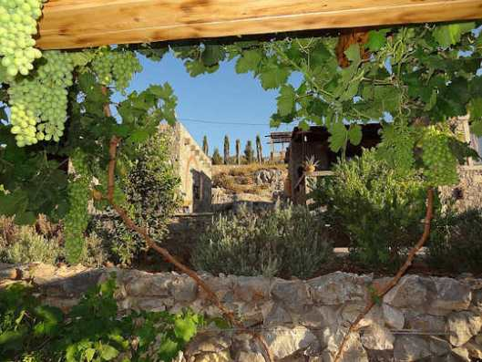 Terra Minoika Villas - the gardens and local stone and wood structures