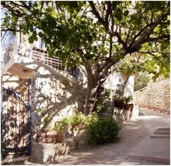 Cressa Ghitonia in Sfaka - leafy entrance