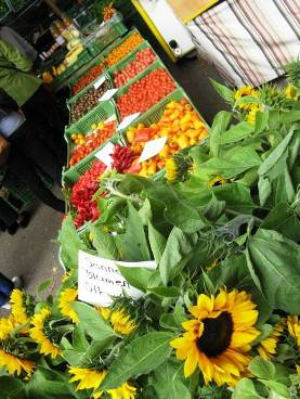 Lake side markets in Zurich - fresh fruit and flowers - sunflowers