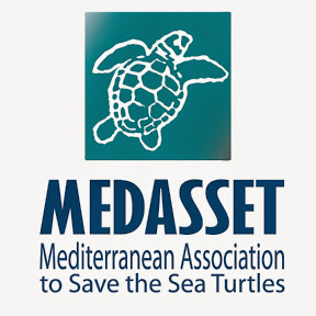 Mediterranean Association to Save the Sea Turtles Logo