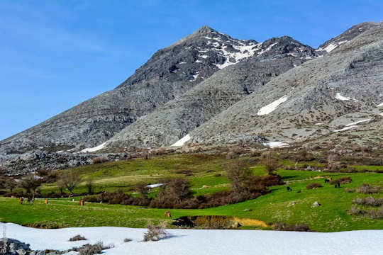 Nida Plateau with spring colours (image by Vasileios Garganourakis)