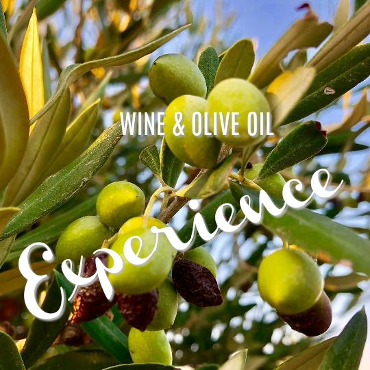 Olive Harvest in Crete - we shatter some of the romantic