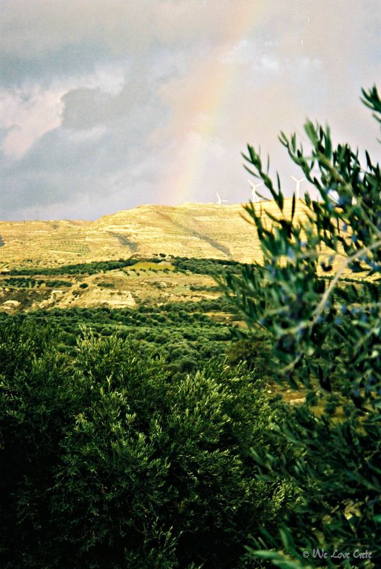 Rainbow over the groves - Central Crete