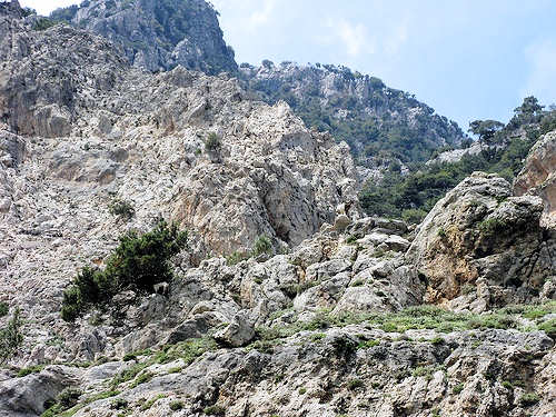 Cretan Nature - Rouvas Gorge is on the E4 European Walking Path