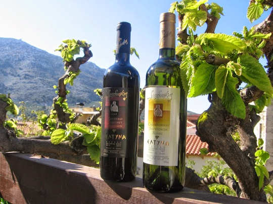Sinadinakis wines of Archanes
