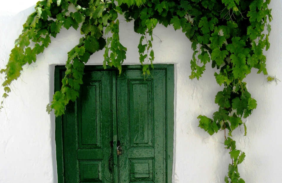 Mykonos - Perfect symmetry in Matogianni - a green door against bright white walls and fresh green grapevines