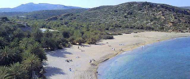 Visit Vai Palm Forest and Beach at the eastern tip of Crete