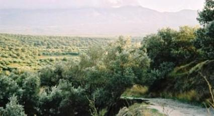 The Valley of Messara