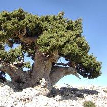 Lefka Ori, White Mountains Crete (image by Aori Walks)