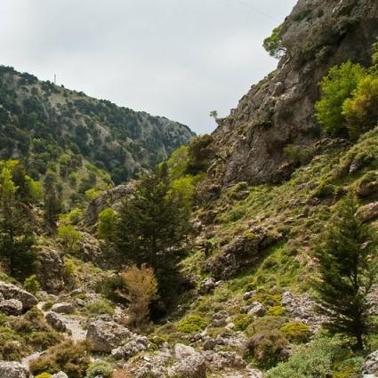 Imbros Gorge, Crete (image by Graeme Churchard)