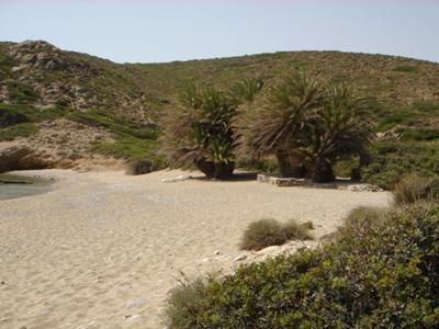 Crete Beach - Hidaway near Itanos