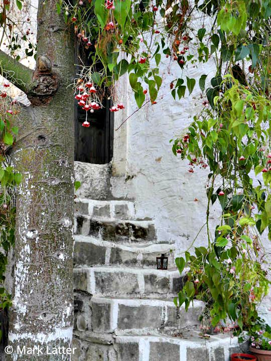 Steps to a small romantic village home (image by Mark Latter)
