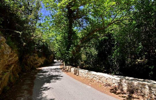 Knosano Gorge near Archanes, Crete