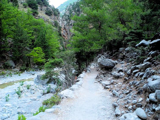 Walking path next to the creek (image by Mark Latter)