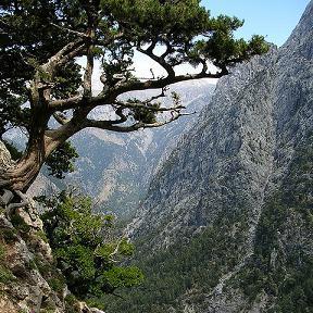 Samaria Gorge, Sfakia (image by Sanderovski)
