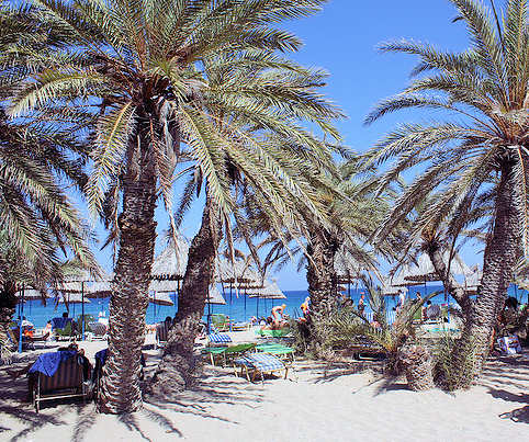 Keeping cool in summer - this is Vai Palm Beach in the east of Crete