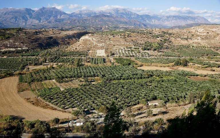 Phaistos looks towards the Psiloritis Mountain range